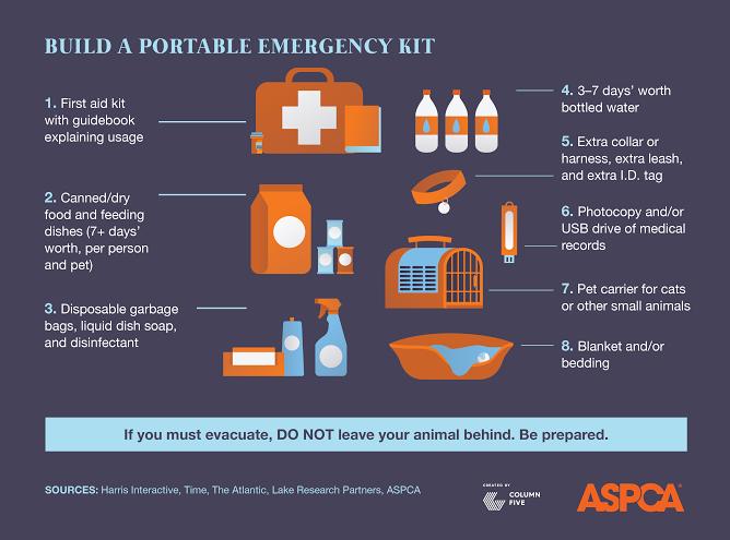 Petpreparedness_Infographics